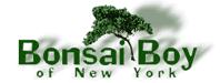 Bonsai Boy of New York优惠码